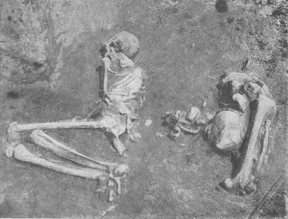 Миллер А.А. Археологические